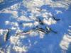 Icefishing4344