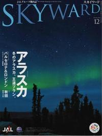 Skyward201012cover_web