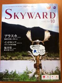 Skyward10