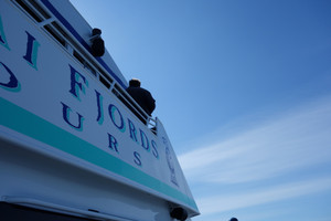 Kenai Cruise Tour (c) AIE
